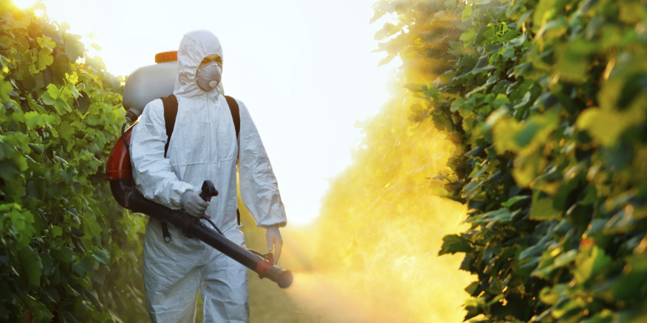 Scan Eat, l'indispensable appareil anti-pesticides